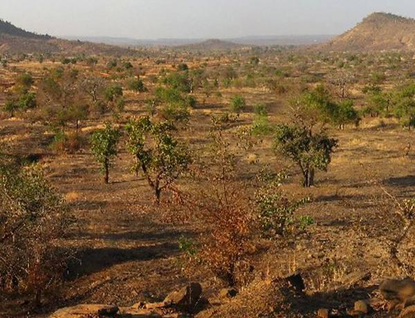 Présentation de la région des Savanes