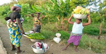 Dans la commune de Yoto, les activités tournent principalement autour de l'agriculture traditionnelle