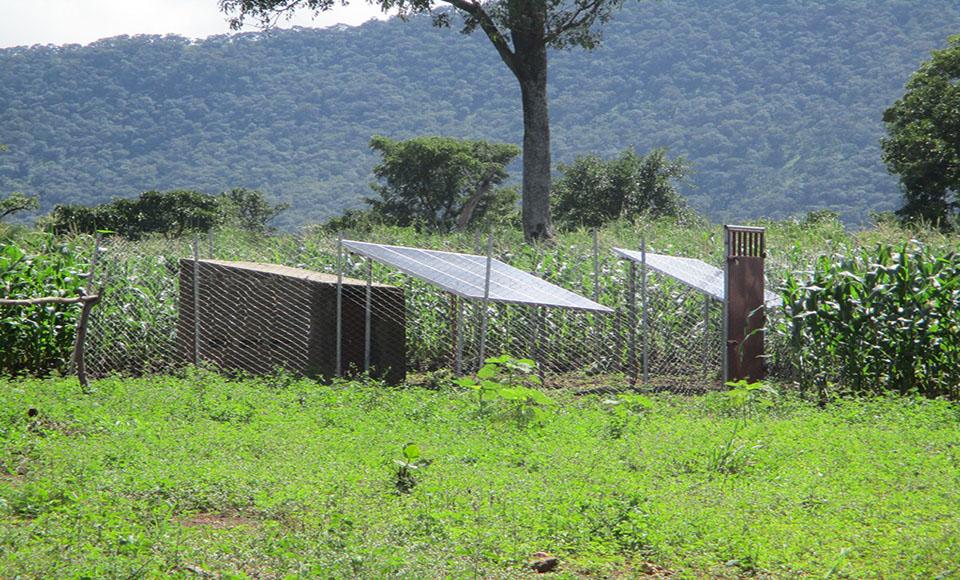 Au-delà du potentiel touristique, le principal atout de la Plaine de Mo est indiscutablement le secteur agricole